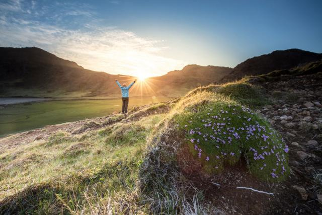 Une personne écartant les bras en admirant le lever du soleil dans un champ